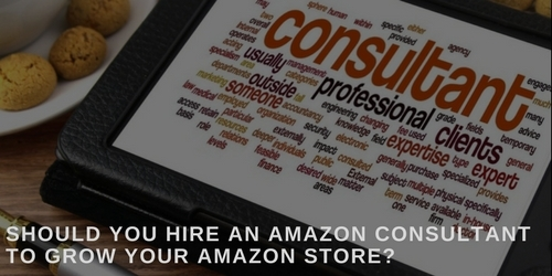 hire an Amazon consultant