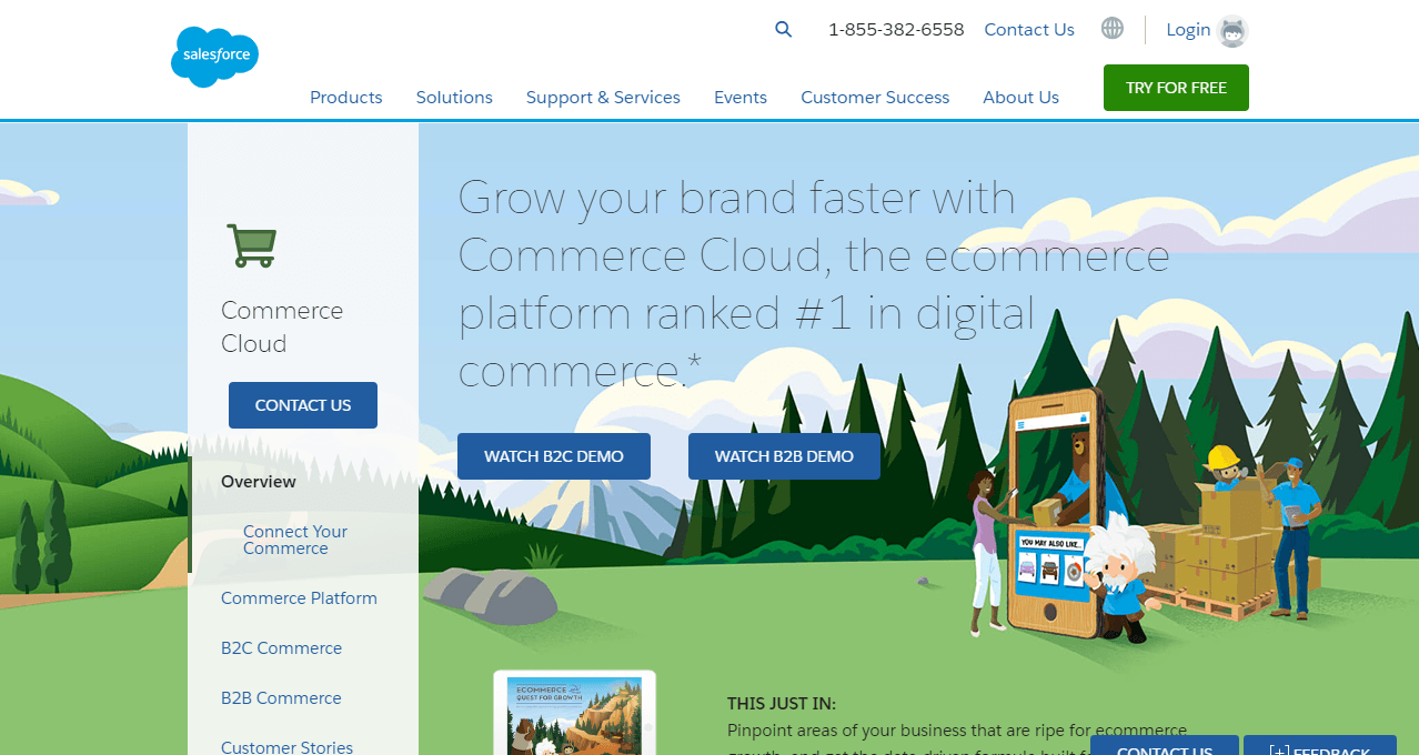 ecommerce tools Salesforce