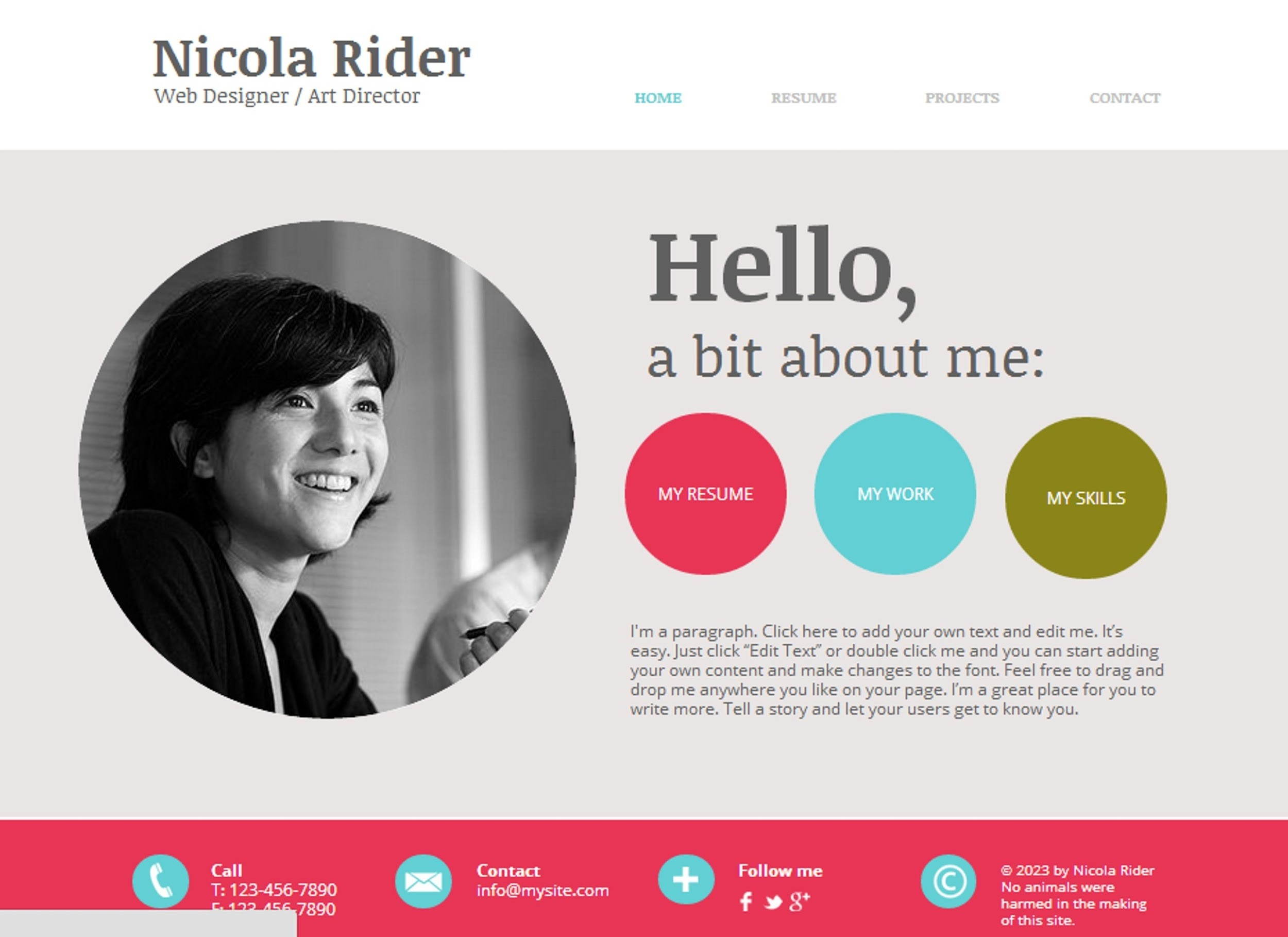 freelancer Website Nicola Rider