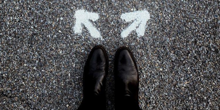 choose freelance business industry