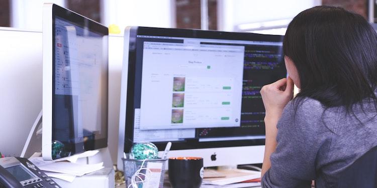 software Freelancer