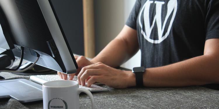 hiring WordPress Freelance Developer