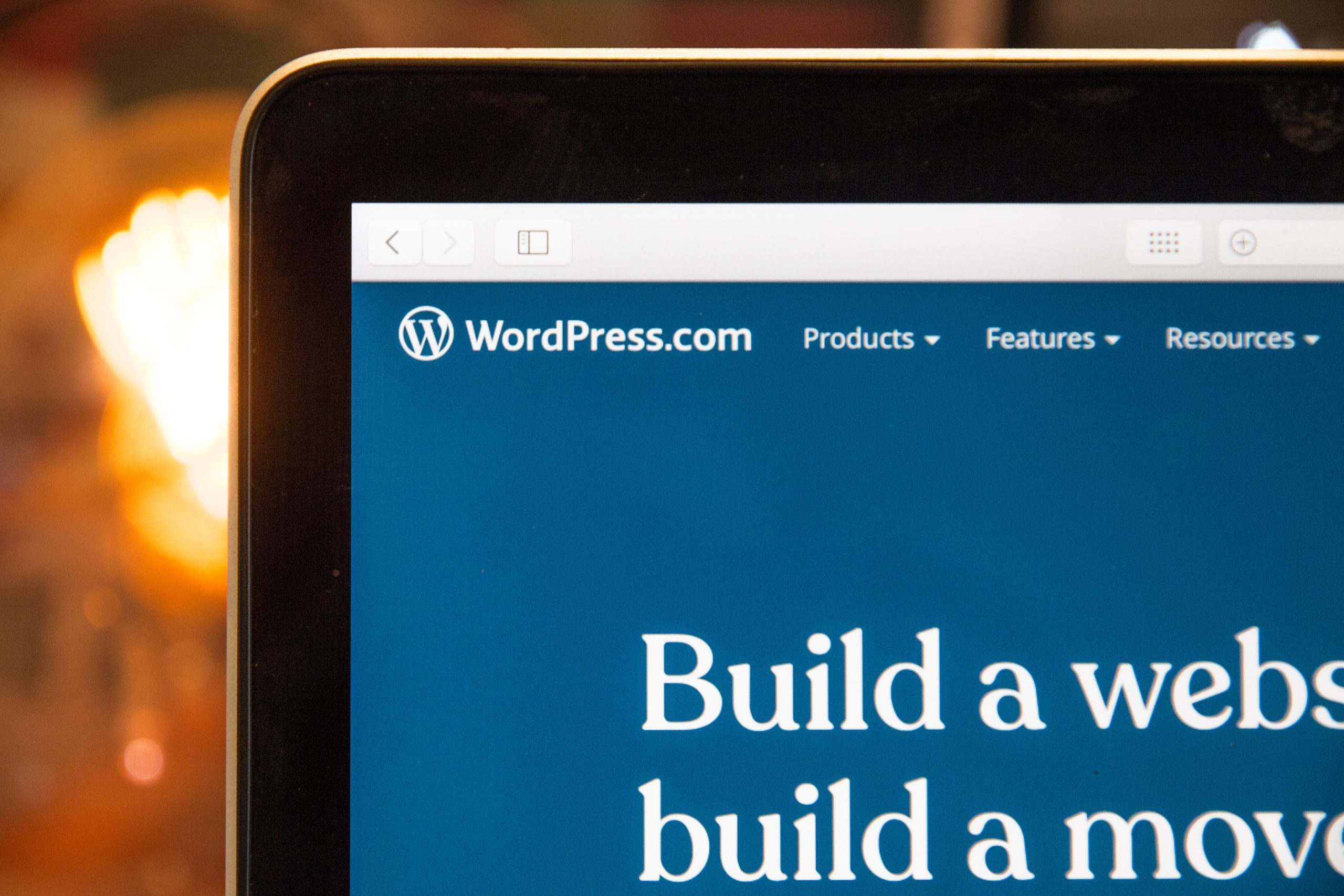 wordpress freelance developer