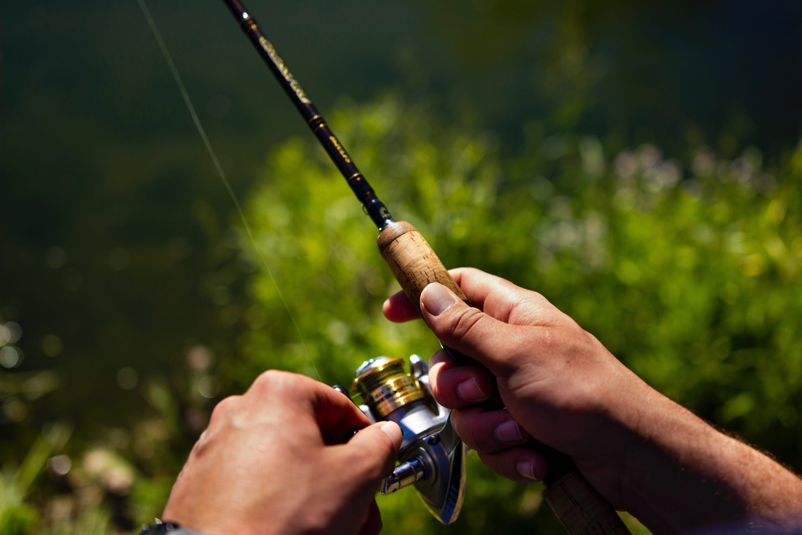 create engaging hooks then reel them in