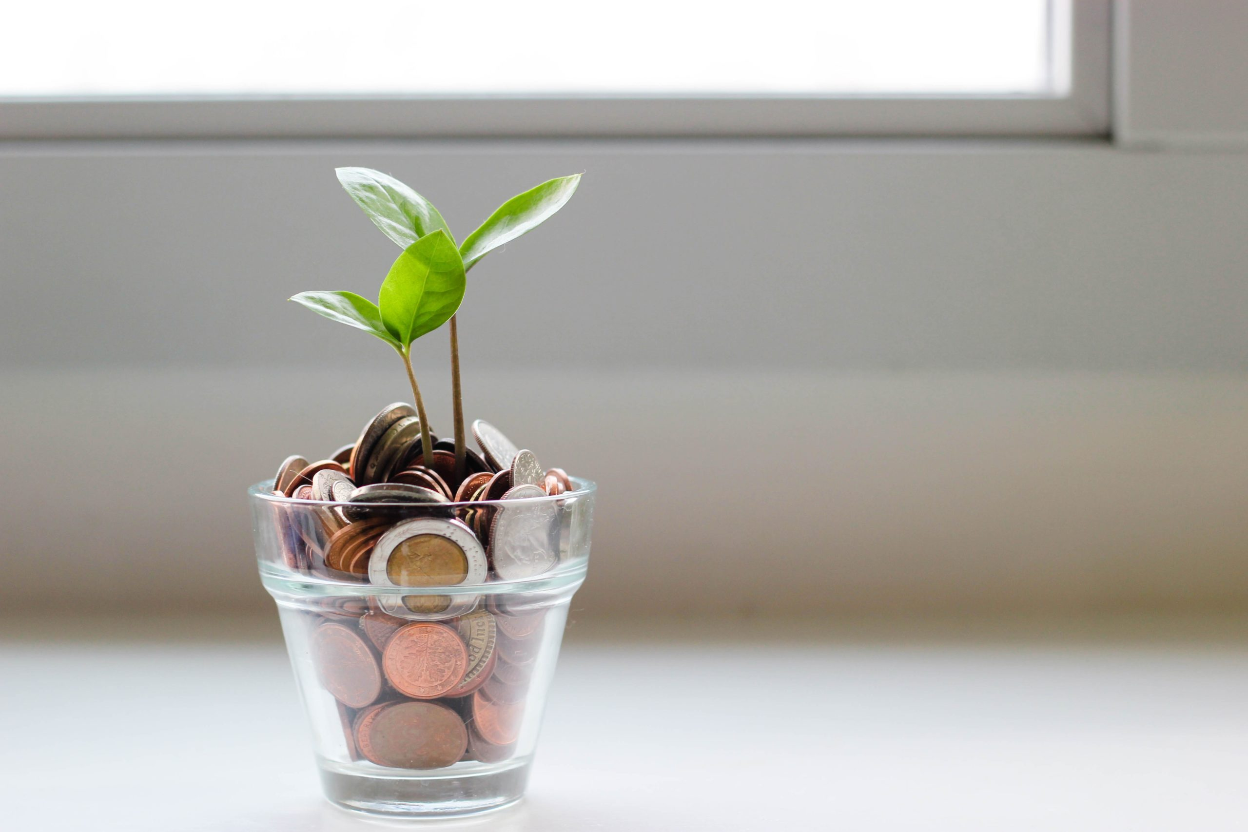 grow your business more efficiently